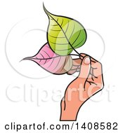 Clipart Of A Hand Holding Bo Leaves Royalty Free Vector Illustration