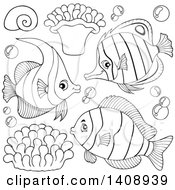 Black And White Lineart Marine Fish