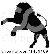Clipart Of A Black Silhouetted Male Lion Pouncing Royalty Free Vector Illustration