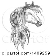 Clipart Of A Dark Gray Sketched Horse Head Royalty Free Vector Illustration