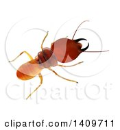 3d Termite From Above On A White Background