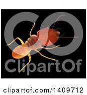 Clipart Of A 3d Termite From Above On A Black Background Royalty Free Illustration by Leo Blanchette