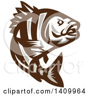 Clipart Of A Retro Brown And White Jumping Sheepshead Fish Royalty Free Vector Illustration