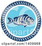 Clipart Of A Retro Sheepshead Fish Over Blue In A Frame Of Rope Royalty Free Vector Illustration