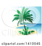 Travel Background Of A Coconut Palm Tree And Coastline With White Text Space On The Left