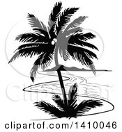 Clipart Of A Black And White Travel Design Of A Coconut Palm Tree And Coastline Royalty Free Vector Illustration by dero