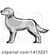 Clipart Of A Retro Grayscale English Setter Dog Royalty Free Vector Illustration
