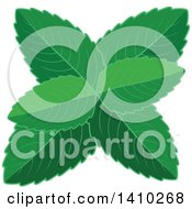 Clipart Of A Culinary Herb Spice Peppermint Royalty Free Vector Illustration