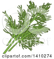 Clipart Of A Culinary Herb Spice Dill Royalty Free Vector Illustration by Vector Tradition SM
