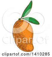 Clipart Of A Sketched Mango Royalty Free Vector Illustration by Vector Tradition SM