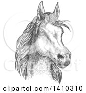 Clipart Of A Gray Sketched Horse Head Royalty Free Vector Illustration