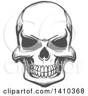 Poster, Art Print Of Gray Sketched Human Skull