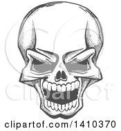 Gray Sketched Human Skull