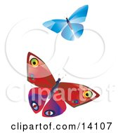 Two Colorful Butterflies One Blue One Red With Patterns Fluttering Over A White Background