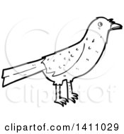 Cartoon Black And White Lineart Bird