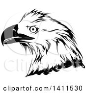Clipart Of A Grayscale Eagle Head Royalty Free Vector Illustration by dero