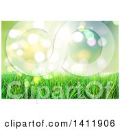 Background Of 3d Grass Against Bokeh Flares