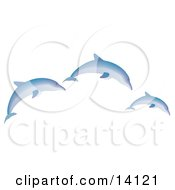 Three Blue Dolphins Jumping Wildlife Clipart Illustration
