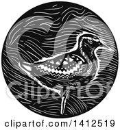 Clipart Of A Retro Black And White Pacific Golden Plover Bird In A Circle Royalty Free Vector Illustration by patrimonio
