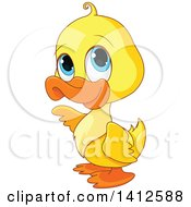Cute Yellow Baby Duckling With Big Blue Eyes