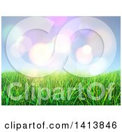 Background Of 3d Grass Against Sky And Flares