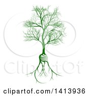 Bare Tree With Light Bulb Shaped Roots