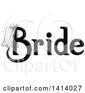 Black Wedding Bride Design With A Veil