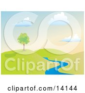 Summer Tree On A Hill Near A Creek Clipart Illustration