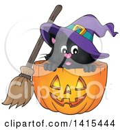 Clipart Of A Cute Black Halloween Witch Cat In A Jackolantern Royalty Free Vector Illustration