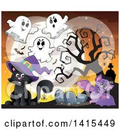 Cute Black Halloween Witch Cat In A Cemetery With Ghosts And A Bat