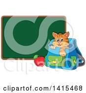 Clipart Of A Cute Cat Inside A Backpack By A Blank Chalkboard Royalty Free Vector Illustration