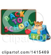 Clipart Of A Cute Cat Inside A Backpack By A Back To School Chalkboard Royalty Free Vector Illustration