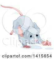 Clipart Of A Cute Gray Mouse Running Royalty Free Vector Illustration by Pushkin