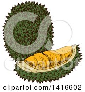 Clipart Of A Sketched Durian Fruit Royalty Free Vector Illustration by Vector Tradition SM