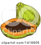 Clipart Of A Sketched Papaya Royalty Free Vector Illustration