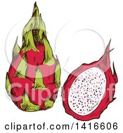 Clipart Of A Sketched Dragon Fruit Royalty Free Vector Illustration by Vector Tradition SM