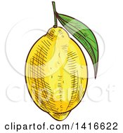 Clipart Of A Sketched Lemon Royalty Free Vector Illustration by Vector Tradition SM