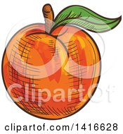Clipart Of A Sketched Apricot Peach Or Nectarine Royalty Free Vector Illustration by Vector Tradition SM