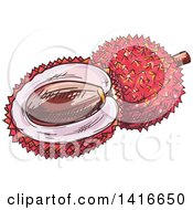 Clipart Of A Sketched Lychee Royalty Free Vector Illustration by Vector Tradition SM