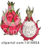 Clipart Of A Sketched Dragon Fruit Royalty Free Vector Illustration