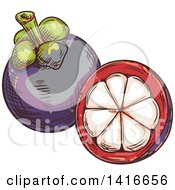 Clipart Of A Sketched Mangosteen Royalty Free Vector Illustration