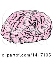 Clipart Of A Sketched Human Brain Royalty Free Vector Illustration by Seamartini Graphics