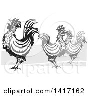Clipart Of A Woodcut Rooster Crowing By Hens Royalty Free Vector Illustration