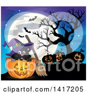Clipart Of A Halloween Witch Cat With Jackolanterns And Bats Against A Full Moon Royalty Free Vector Illustration by visekart