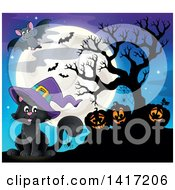 Halloween Witch Cat With Jackolanterns And Bats Against A Full Moon