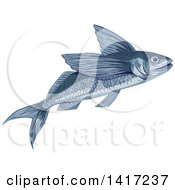 Clipart Of A Sketched Flying Fish Or Exocoetidae Royalty Free Vector Illustration by patrimonio