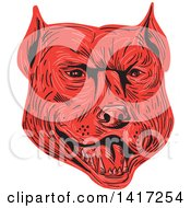 Poster, Art Print Of Sketched Red Angry Pitbull Dog Head