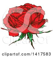Clipart Of A Sketched Red Rose Flower Royalty Free Vector Illustration