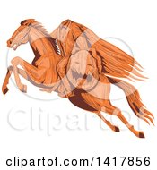 Clipart Of A Sketched Horseback Headless Horseman Holding Out A Jackolantern Royalty Free Vector Illustration