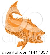 Clipart Of A Sketched Orange Largemouth Bass Fish Royalty Free Vector Illustration by patrimonio